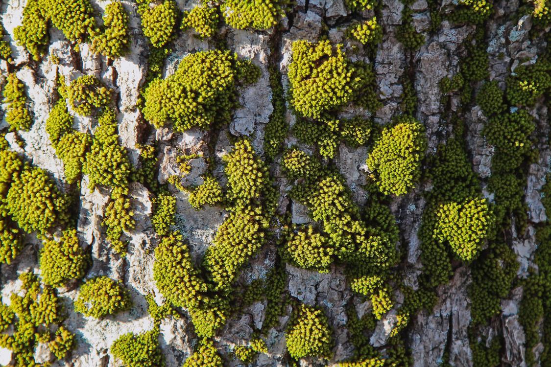 steinar-engeland-154411-unsplash.jpg