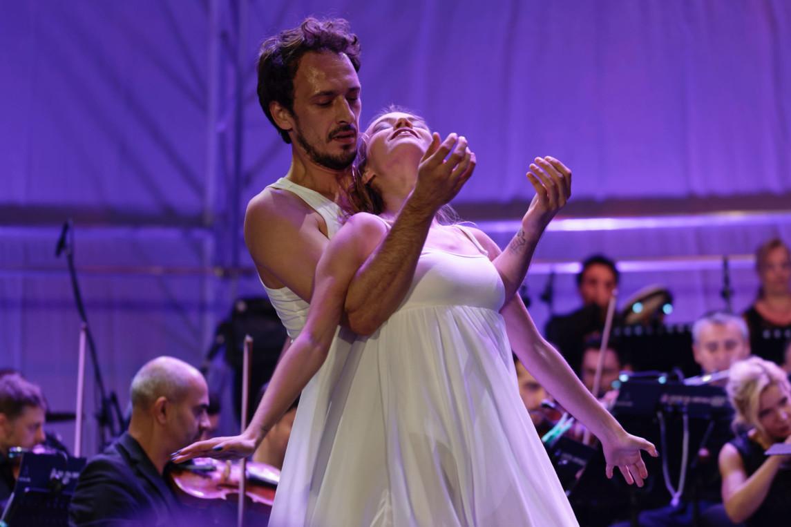 adult-audience-ballerina-1443447.jpg