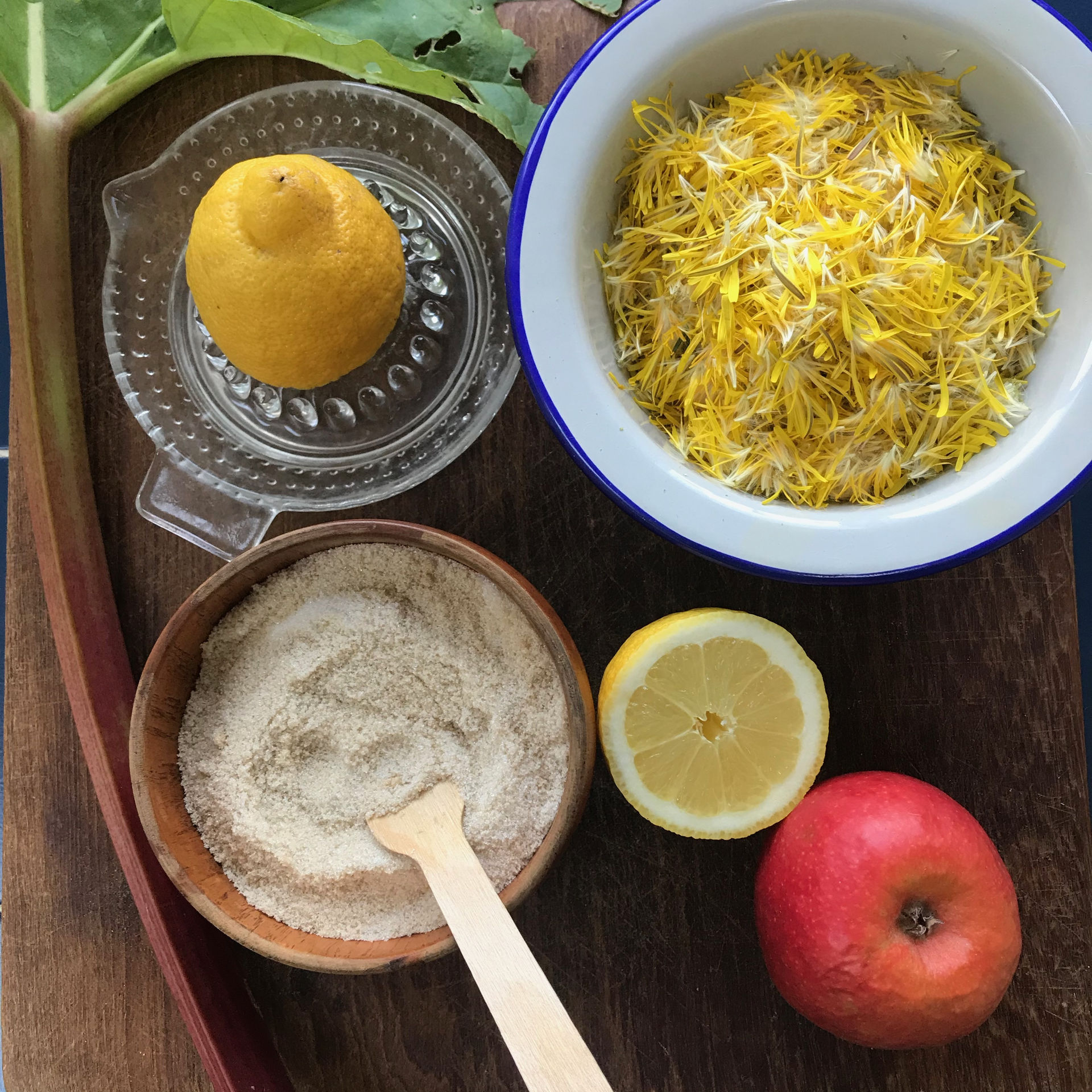 zero-waste-recipe-dandelion-syrup-img-9300.jpg