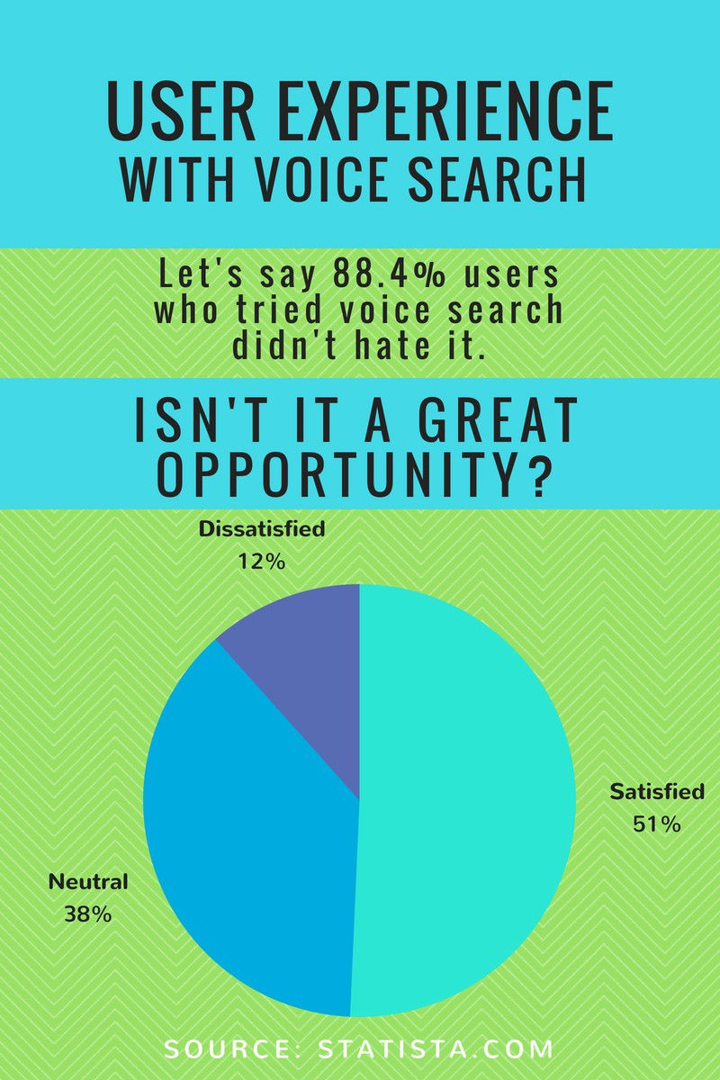 Voice search experience statistics